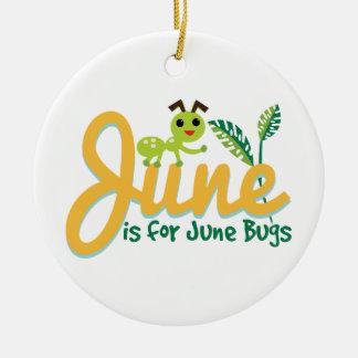 Insecto de junio adorno redondo de cerámica