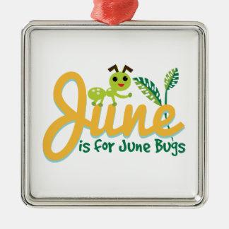 Insecto de junio ornamentos de reyes