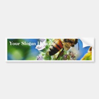 Insecto de la abeja pegatina de parachoque