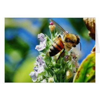 Insecto de la abeja felicitación