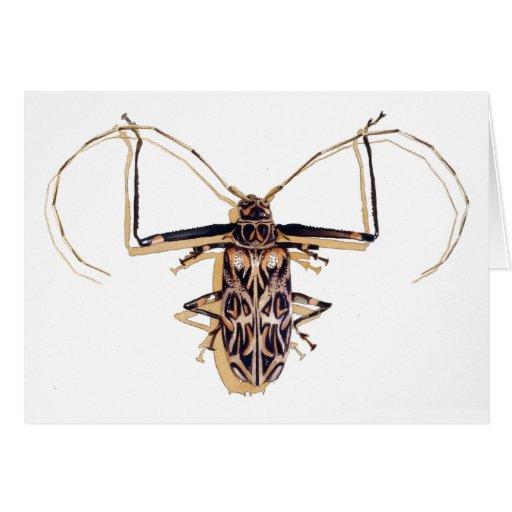 """""""Insecto de la acuarela del insecto del escarabajo Tarjetas"""