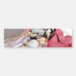 Insecto de la mosca pegatina para auto