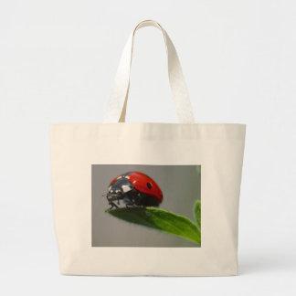 insecto de la señora bolsa