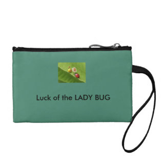 insecto de la señora