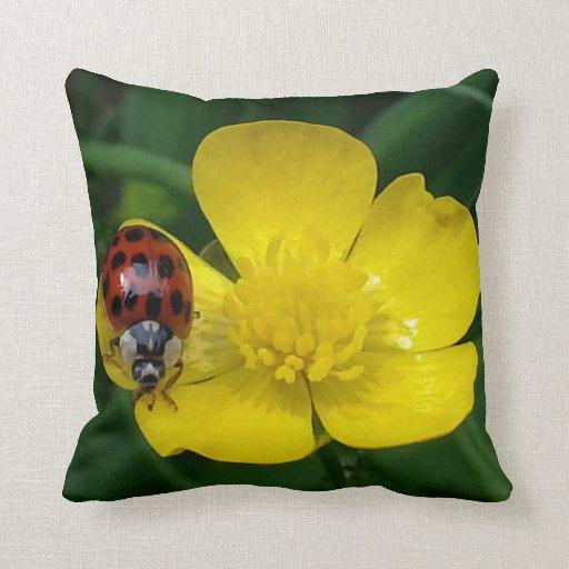 Insecto de la señora en la almohada de tiro de la