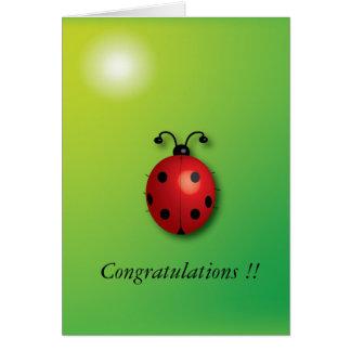 insecto de la señora tarjeta de felicitación