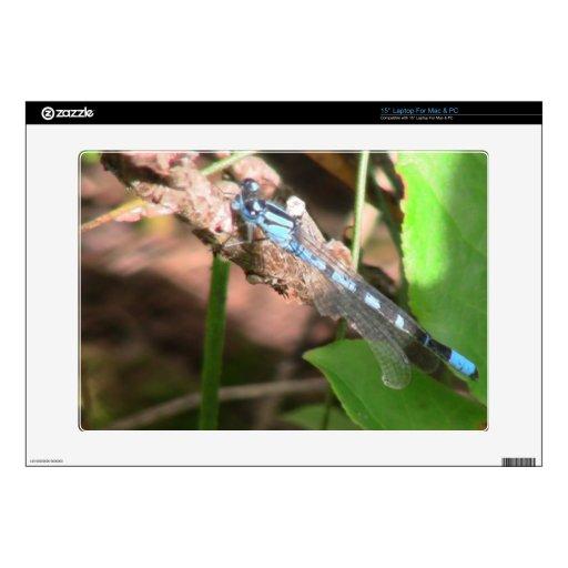 Insecto de las arañas de los arácnidos de los inse skins para portátil