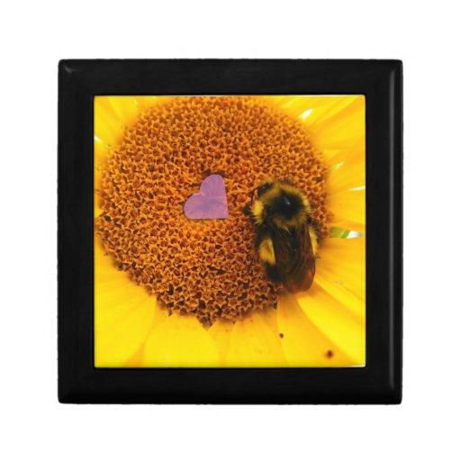 Insecto del amor caja de joyas