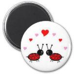 Insecto del amor imanes para frigoríficos