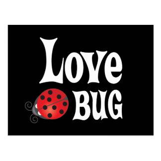 Insecto del amor - mariquita postal