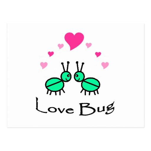 Insecto del amor postal