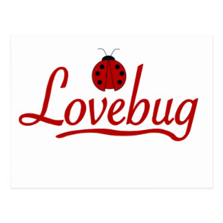 Insecto del amor tarjetas postales