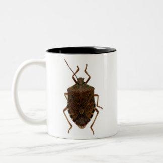 Insecto del hedor taza dos tonos