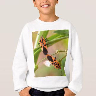 insecto del insecto   en la naturaleza sudadera