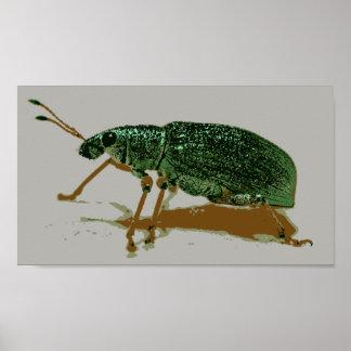 Insecto del jade póster