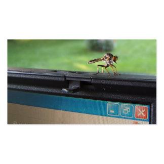 Insecto en tarjeta de visitas del ~ del sistema tarjetas de visita