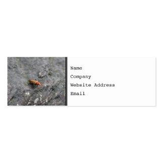 Insecto en una roca tarjetas de visita mini