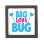Insecto GRANDE del amor con las antenas del insect Caja De Regalo De Calidad