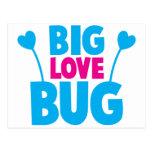 Insecto GRANDE del amor con las antenas del Postal