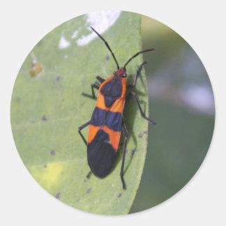 Insecto grande del Milkweed Pegatina Redonda
