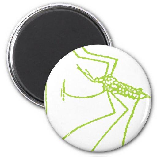 insecto imán redondo 5 cm