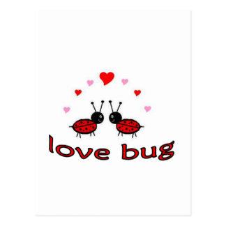 Insecto precioso del amor tarjetas postales