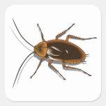 Insecto realista de la cucaracha de Brown Pegatina Cuadrada