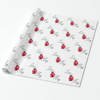 Insecto rojo del amor - mariquita
