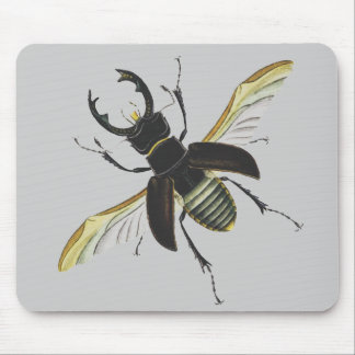 Insecto Mouse Pads