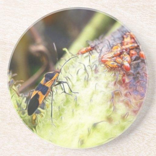 Insecto y bebés - Oncopeltus Fasciatus del Milkwee Posavasos Manualidades