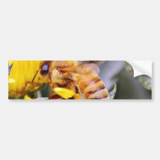 Insectos 3 de las abejas pegatina de parachoque