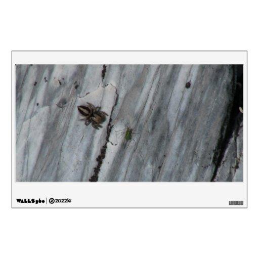 Insectos/arácnidos de la fauna de Idaho del barran