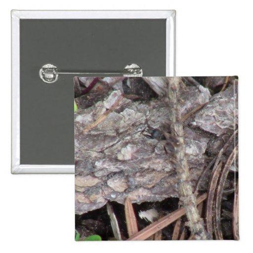 Insectos/arácnidos de la fauna de Idaho del barran Pin Cuadrada 5 Cm