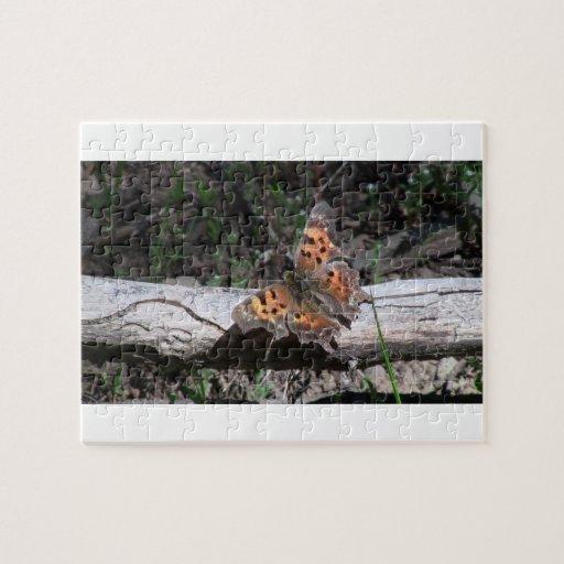 Insectos/arácnidos de la fauna de Idaho del barran Rompecabezas Con Fotos