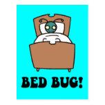 insectos de cama tarjetas postales