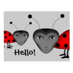 Insectos del hombre tarjeta postal