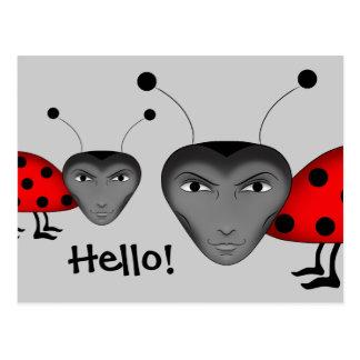 Insectos del hombre postal