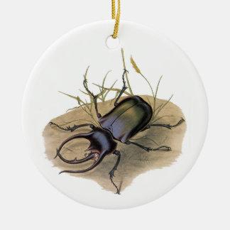 Insectos del vintage, insectos, escarabajo de adorno redondo de cerámica