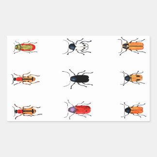 Insectos del vintage rectangular pegatinas