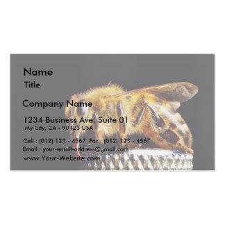 Insectos Marco de las abejas Tarjetas De Visita