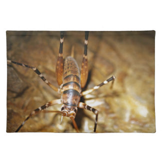Insectos rayados del bicho de Weta Manteles Individuales