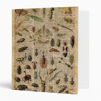 Insects Bugs Vintage Illustration Dictionary Art 3 Ring Binder