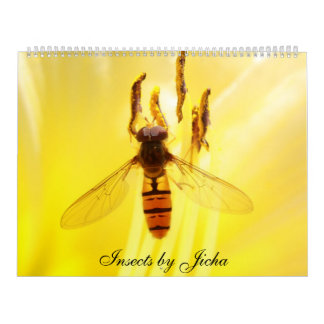 Insects by Jicha Calendar