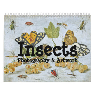 Insects Calendar
