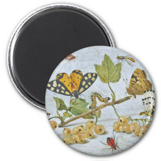Insects Crawling 2 Inch Round Magnet