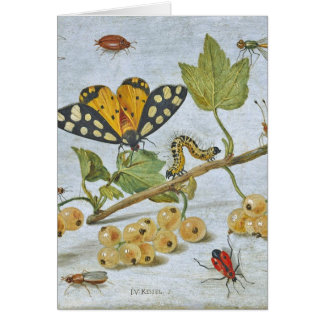 Insects Crawling Greeting Card