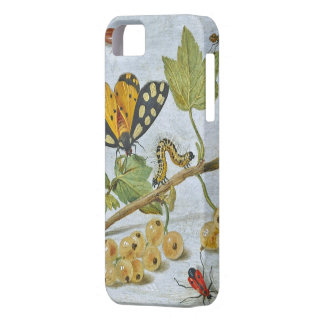 Insects Crawling iPhone 5 Covers