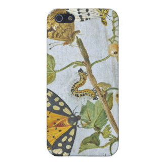 Insects Crawling Cover For iPhone SE/5/5s