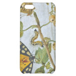 Insects Crawling iPhone 5C Cover