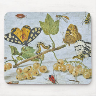 Insects Crawling Mouse Pad